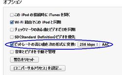 iPod 設定