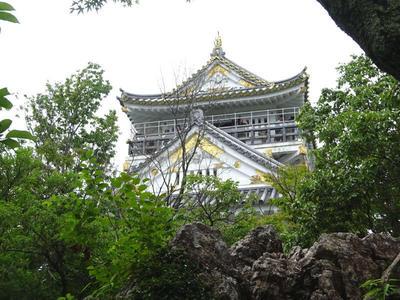 見上げる岐阜城