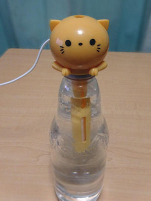 ペットボトル加湿器 猫