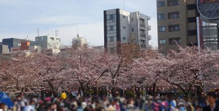 錦糸公園 2017.04.02
