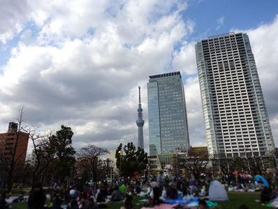 錦糸公園からのスカイツリー