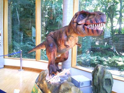 琥珀博物館 恐竜