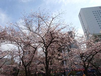 錦糸公園の桜 その1